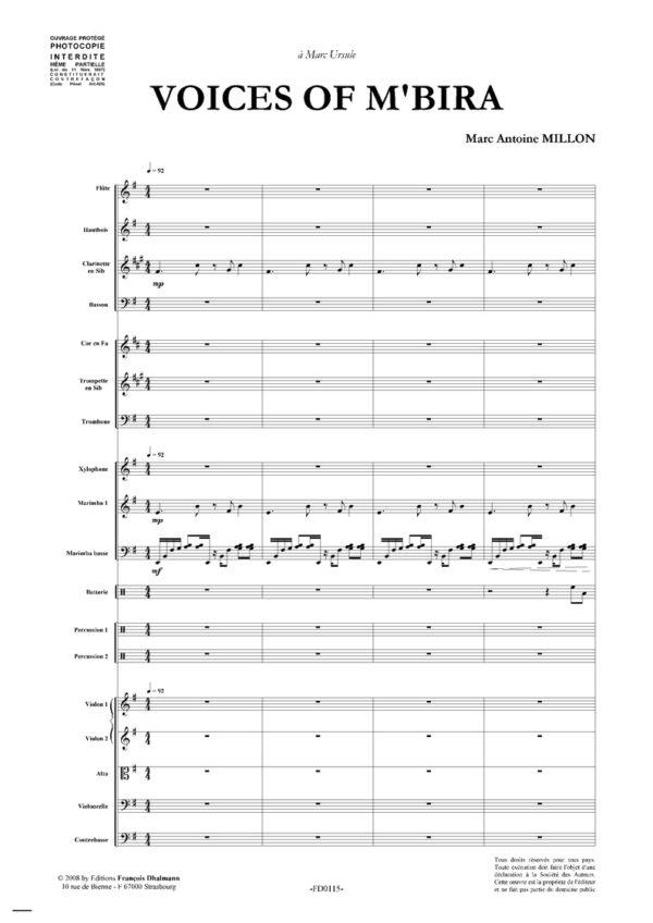 Voices of m'bira. Orchestre symphonique